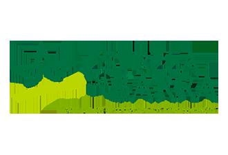 Estrela da Barra